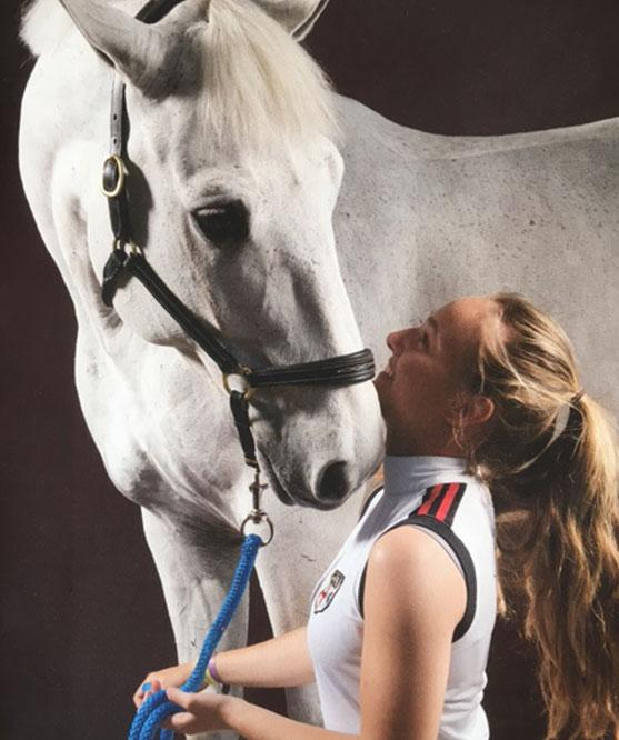 Paardenhandel Mees Jan Bvba  - Paardenhandel